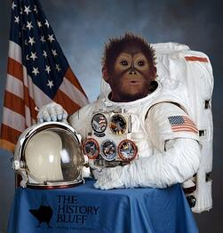 Monkey in Space Suit